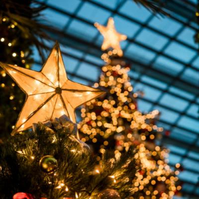 A Christ Centered Christmas Tradition:  Bethlehem Dinner