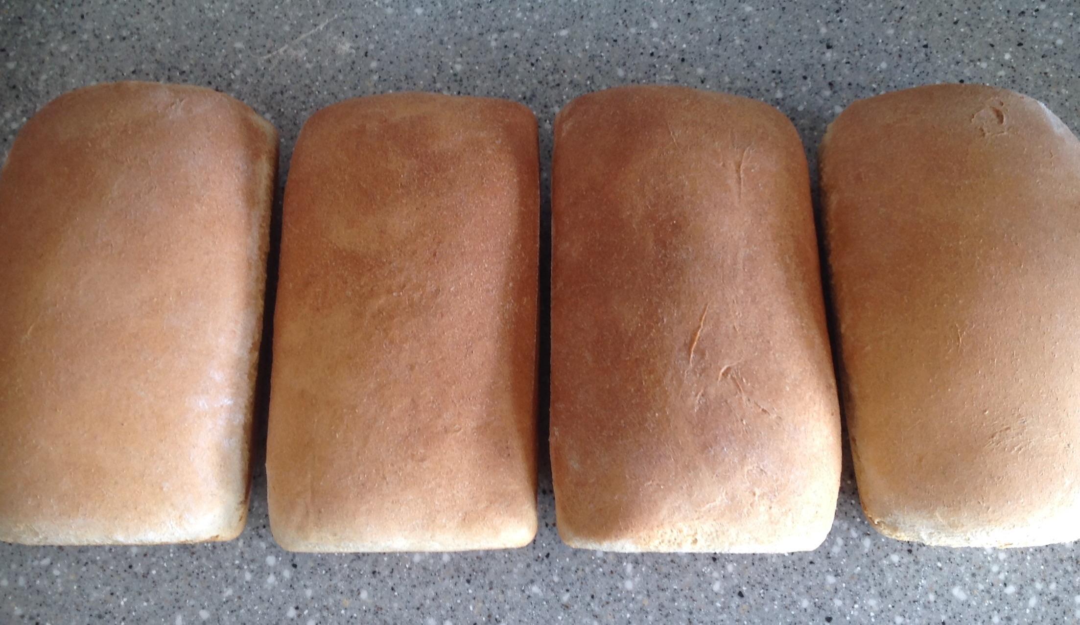 Best homemade bread recipe!